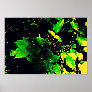 Berry Vine Print