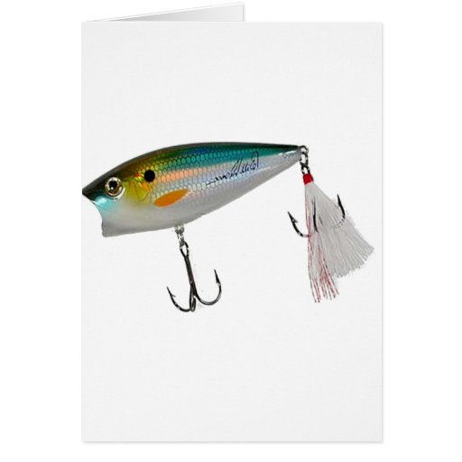 Best Fishing Baits for Bass and other fish Card