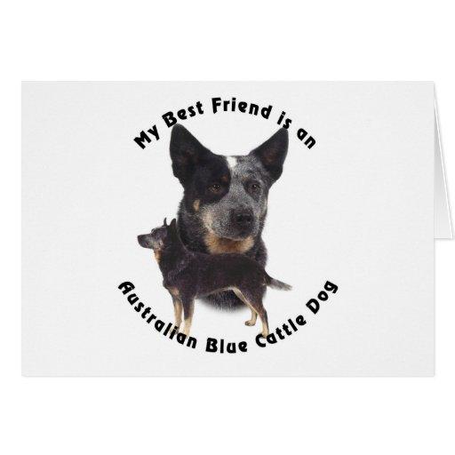 Best Friend Australian Blue cattle Dog Greeting Cards