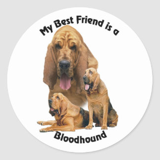 Best Friend Bloodhound Classic Round Sticker