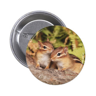 Best Friends Baby Chipmunks Buttons