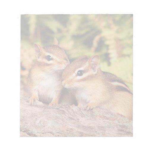 Best Friends Baby Chipmunks Scratch Pad