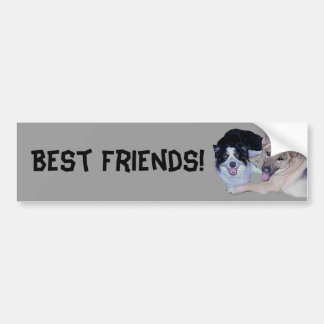 Best Friends Border Collie German Shepherd Bumper Sticker