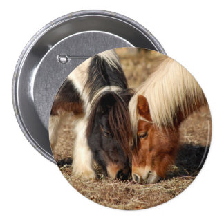 Best Friends! Button with two ponies
