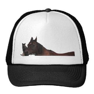 Best Friends Cat and Horse Cuddle Up Cap