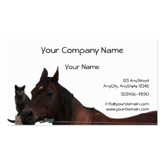 Best Friends Cat and Horse Cuddle Up Pack Of Standard Business Cards