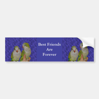 Best Friends Forever Cute Birds Bumper Sticker