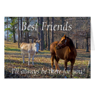 Best Friends Horse and Donkey Greeting Card