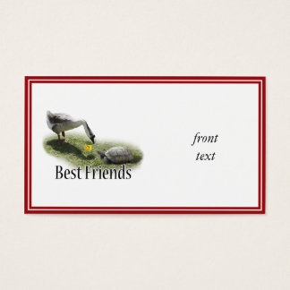 Best Friends - The Turtle & The Goose