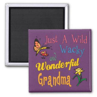 Best Grandma Gifts Magnet