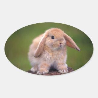 Best Long-Eared Bunny Buddy Oval Sticker