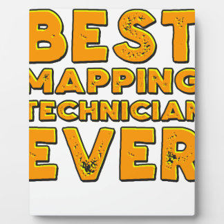 Best mapping technician ever plaque