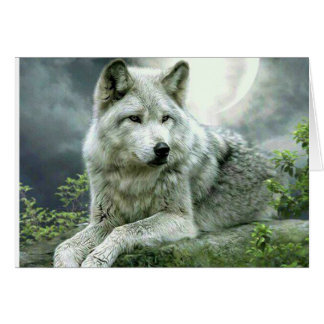 Best Selling Imaginative Wolf Art Illustration Pai Card