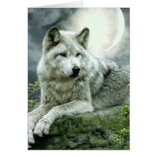 Best Selling Imaginative Wolf Art Illustration Pai Card