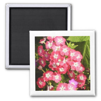Best Wishes - Floral Presentation Square Magnet