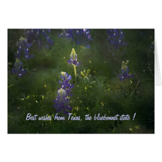 Best wishes from Texas, the b... Greeting Card