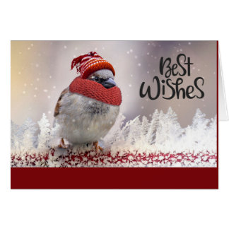 Best Wishes Sparrow With Hat Card