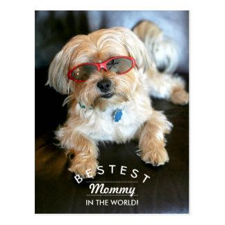 Bestest Mommy Custom Doggie Mother's Day Postcard
