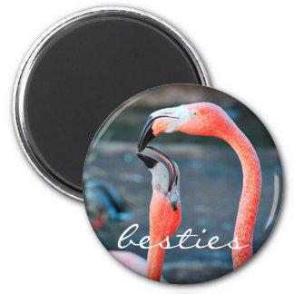 """Besties"" quote cute orange pink flamingos photo Magnet"