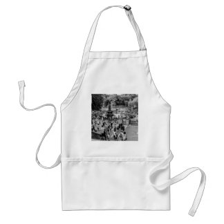Bethesda Fountain in Central Park Photo Apron