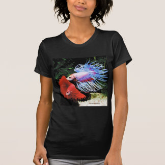 Betta splendens T-Shirt