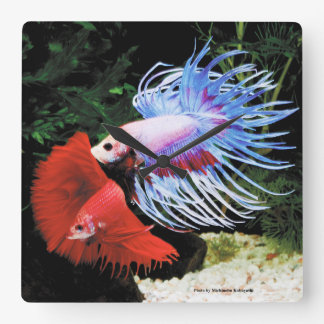 Betta Wallclocks