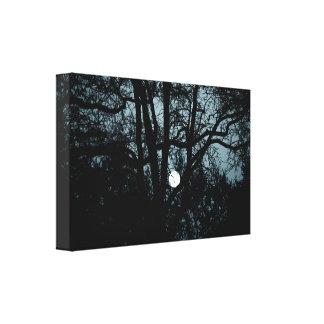 Between windows & moon canvas print