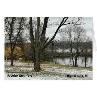 Bewabic State Park, Crystal Falls, MI Note Card