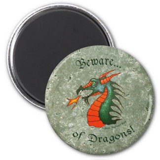 Beware Dragons Stone Green Magnet