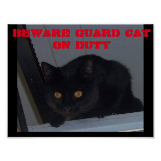 Beware Guard Cat On Duty Poster