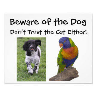 Beware of the dog. Don't trust the cat either! Photo Print