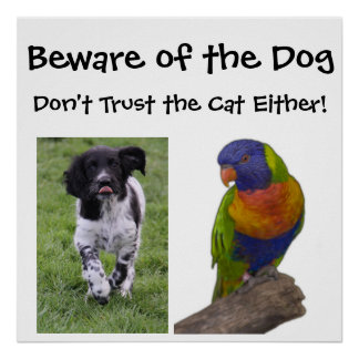 Beware of the dog. Don't trust the cat either! Posters