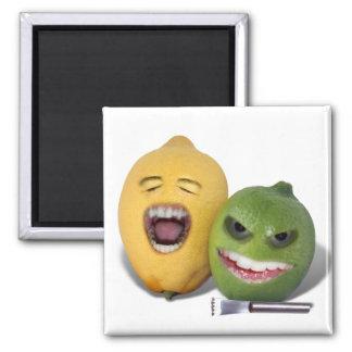 Beware the Lemon Zester Magnet