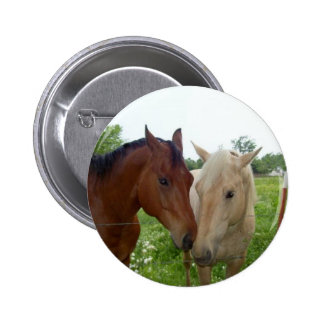 BFF Best Friends Forever - Horses 6 Cm Round Badge