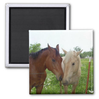 BFF Best Friends Forever - Horses Magnet
