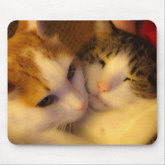BFF Kitty Mousepad