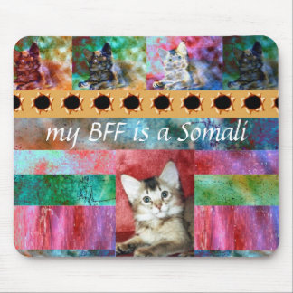 BFF Somali Cat Surprise Mouse Mats