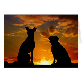 BFF Sunset Dogs Thinking Of You Card