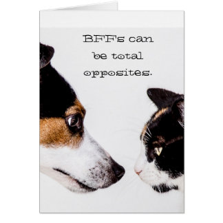 BFFs Total Opposites Cat & Dog Greeting Card
