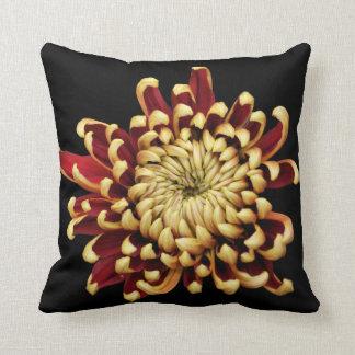 Bi-colored Chrysanthemum throw pillow