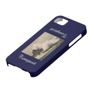 Biarritz Ruse de Marée Tempest 1920 iPhone 5 Case