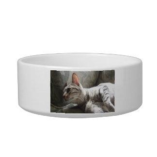 Bibi The Cat Dish Cat Water Bowls