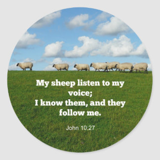 Bible verse, John 10:27, My sheep... Classic Round Sticker