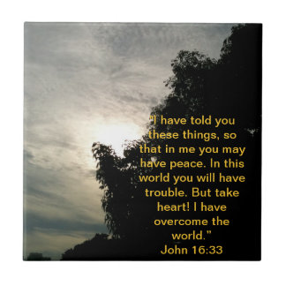 Bible Verse Tile: Jesus has overcome the world. Small Square Tile