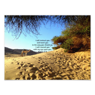 Bible Verses Inspirational Quote Psalm 32:8 Photograph