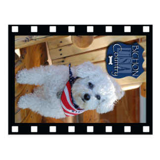 Bichon country with negative frame postcard