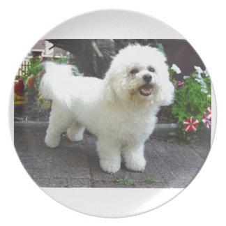 Bichon Frisé Dog Plate