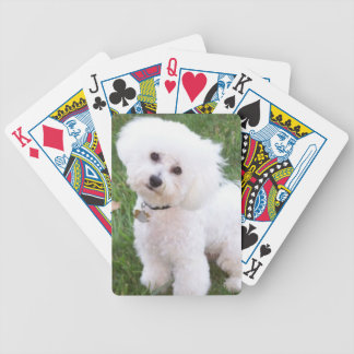 Bichon Frise Dog Playing Cards