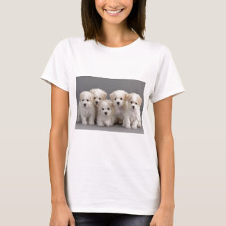 Bichon Frisé Puppies T-Shirt