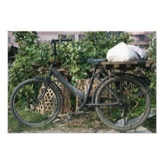 Bicycle in Taipei garden, Taiwan Photo Print